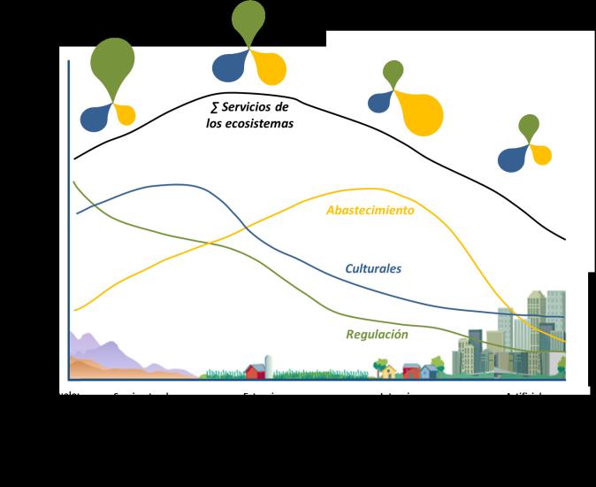 flujos servicios ecosistemas en gradiente